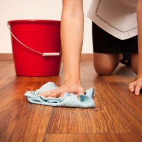 Чем мыть ламинат: советы как и чем отмыть пятна и грязь. Рекомендации по выбору средств для чистки ламината (видео + 90 фото)
