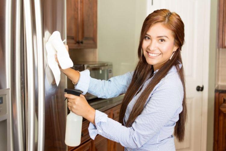 Как отмыть холодильник внутри в домашних условиях от желтизны, запаха, жира