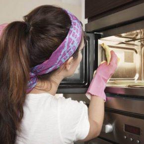 Как помыть микроволновку: чем и как эффективно очистить в домашних условиях (100 фото и видео)