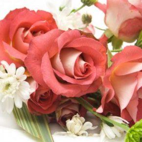 Как дольше сохранить розы: популярные способы как в домашних условиях можно сохранить розы (75 фото)